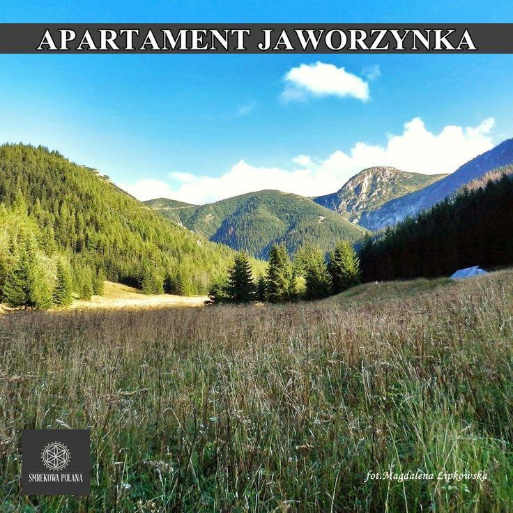 Apartament Jaworzynka - zapraszamy! #poland #polska #malopolska #zakopane #mountain #tatry #place #destination