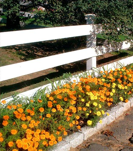 Modern Or Rustic Front Landscape Design: 1000+ Ideas About Horse Fence On Pinterest