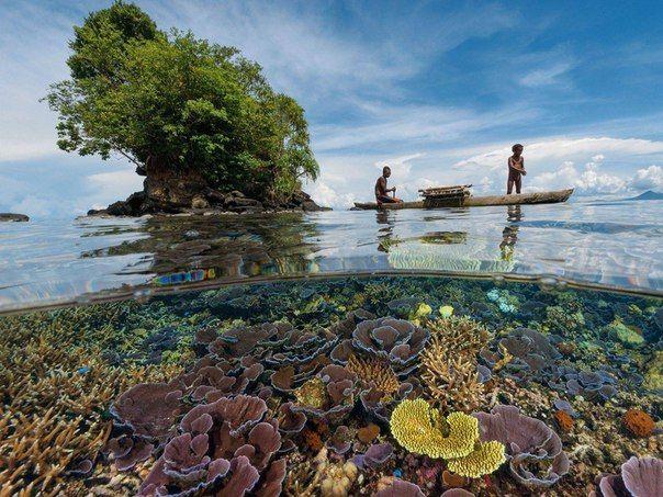 Кристально чистая вода, Папуа-Новая Гвинея  #travel #travelgidclub #путешествия #Гвинея #ПапуаНоваяГвинея