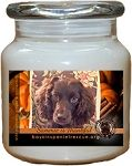 Boykin Spaniel Rescue, Inc. is dedicated to the rescue, rehabilitation, and rehoming of at-risk, purebred, Boykin Spaniels. Your purchase of these candles directly care for the Little Brown Dogs we love so much!    Share the Light and Share Our Story...  For more information, please visit:  www.boykinspanielrescue.org