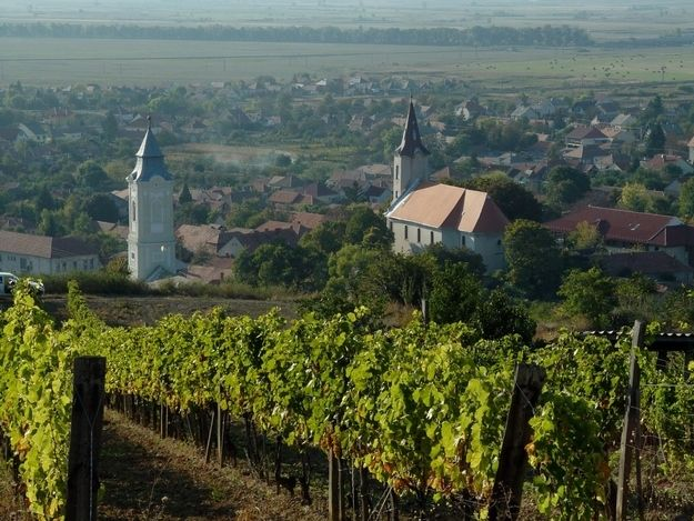 Tokaj | Community Post: The 17 Most Amazing Places To Visit In Hungary