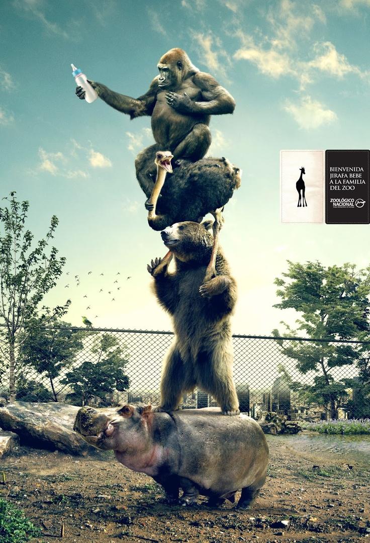 Creatividad Publicitaria: grafica