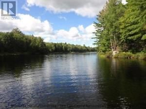 Rustic cabin 100 wooded acres 2640' on Blackmore Lake in Muskoka