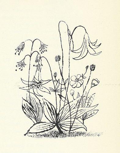 "31: ""Flowers"" by Ben Shahn by Scott Lindberg, via Flickr"