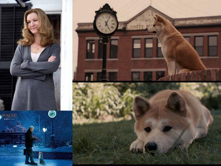 """47 best """"Hatchi"""" images on Pinterest   Akita dog, Dog ..."""