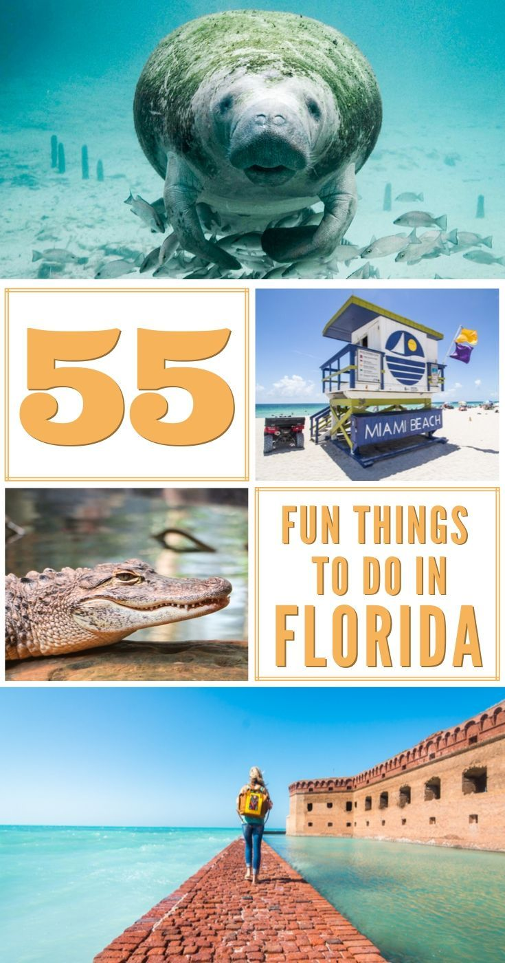 The Best Things To Do In Florida 55 Places To Visit In The Sunshine State Florida National Parks Florida Florida Travel
