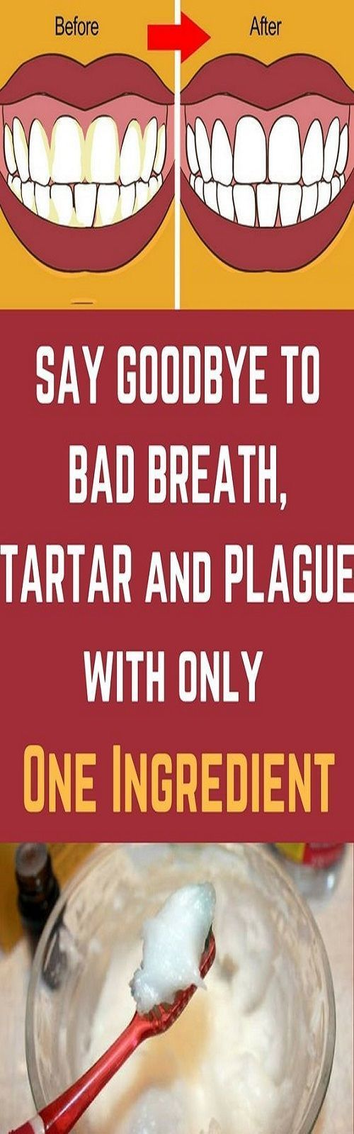 how to get rid of plaque and tartar