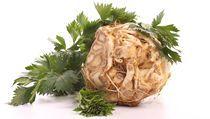 Podívejte se na recepty z celeru | na serveru Lidovky.cz | aktuální zprávy