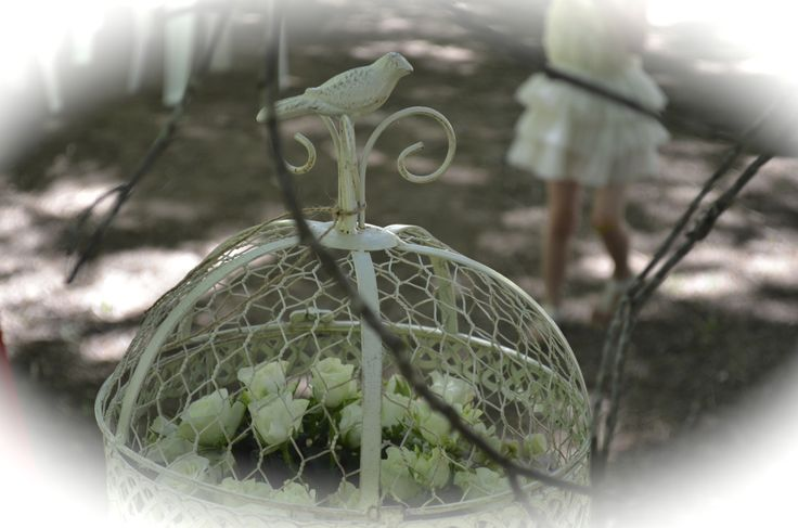 birdcage & flowers