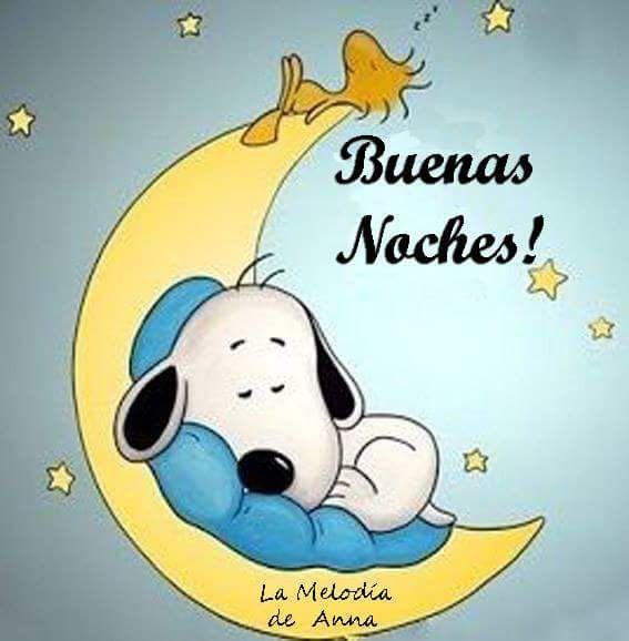 Buenas noches ✨
