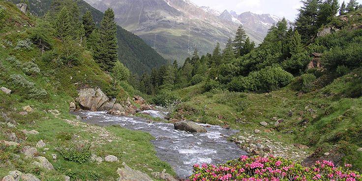 Frosch Familienurlaub - Alpenüberquerung - Transalp Südtirol
