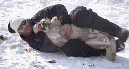 And keeps them warm in the snow with only his love and manly thighs. | 38 Photos Of Tom Hardy With Dogs To Celebrate His 38th Birthday