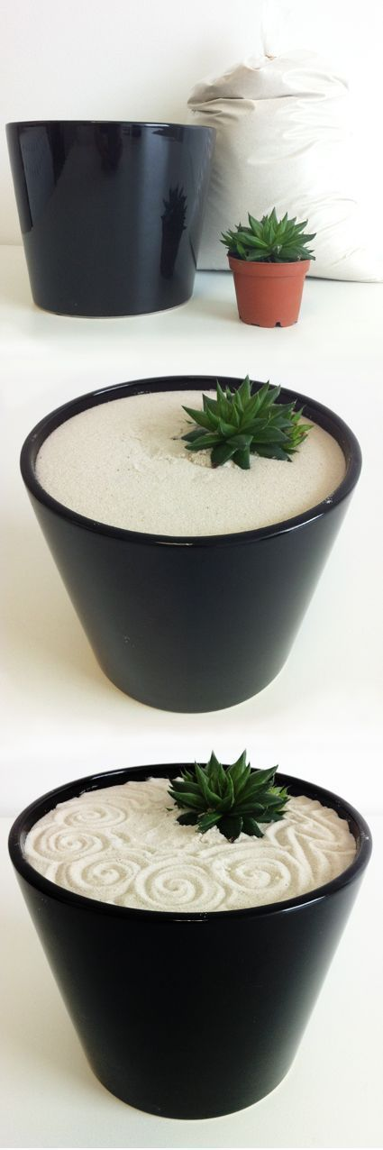 DIY mini zen garden with succulent.    How to: Select a container from your local garden centre, home decor or craft store (glass looks fantastic also). Get white, fine sand (try terrarium or aquarium sand from your  local pet store) and select a small succulent or cactus. Fill the container 3/4 with the sand, add your plant, leaving it in it's container, then top up with sand so it covers the lip of the plant container. Give it a gentle shake to even out the sand surface then grab a pen or…