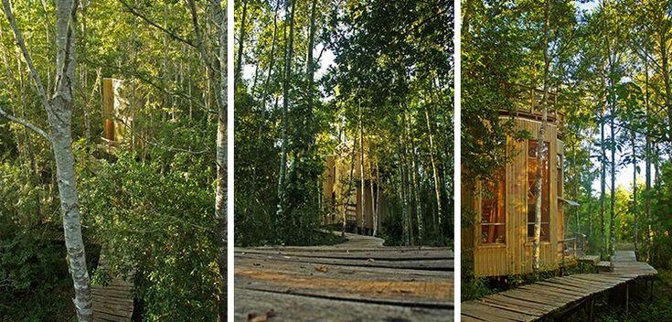 PARQUE ECOLÓGICO REUSSLAND (www.lanalhuenoticias.cl)