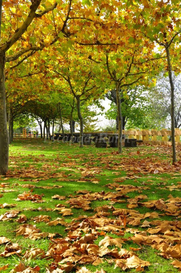 Fotos de La Casa de Su - Casa rural en Baños de Montemayor (Cáceres) http://www.escapadarural.com/casa-rural/caceres/la-casa-de-su/fotos#p=5280df80ea814