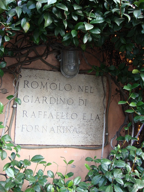 Roma by t-cat1, via Flickr