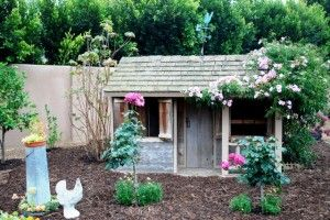 kCountry Chicks, Coops Sight, Chicken Coops, Bonnie Manions, Bok, Children Playhouses, Adorable Coops, Hens, Chickie Chicks
