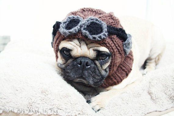 All You Need is Pug Aviator Dog Hat Pug by AllYouNeedIsPugShop