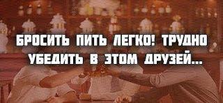 Блог Надежды Матвеевой. Откровения старой и мудрой черепахи: Бросить пить…