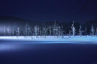 美瑛の風景が好きで毎年のように訪れていますが、冬は行ったことがありませんでした。雪道の運転が心配でしたし、冬場の丘陵地が観光できるのかもわからなかったのでこれまで諦めていたのですが、カレンダーで冬の景色を見ているうちにどうしても本物が見てみたくなりました。ネットで調べると冬でもネイチャーガイドや現地在住の写真家の方たちが案内してくれるツアーがあること、これまで冬季はクローズされていた「青い池」が今シーズンから見学可能になったことがわかり、ついに冬の美瑛旅行を敢行!夏や秋とはまた違った感動的な風景に出会えました。<br /><br />3日目は自分たちで美瑛の丘めぐりをすることに。そして夜は宿泊先のホテルで大晦日ディナー&スパで全身トリートメント♪ 1年の最後は好きなことずくめで締めくくりました(^^)<br /><br /><行程><br />12月29日 羽田→旭川(JAL)  <br />      旭山動物園、美瑛駅、青い池<br />      旭川グランドホテル泊<br /><br />12月30日 美瑛写真ツアー<br />      旭川グランドホテル泊<br…