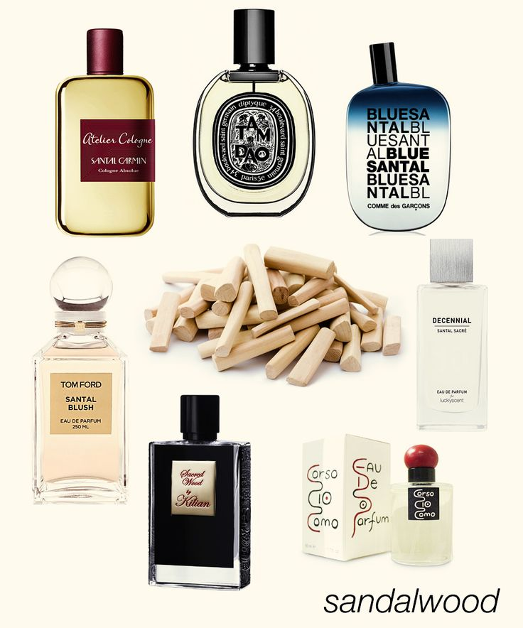 Creamy Sandalwood: Santal Carmin, Tam Dao EDP, Blue Santal, Santal Sacré, 10 Corso Como, Sacred Wood, and Santal Blush.  #niche #perfume #luckyscent