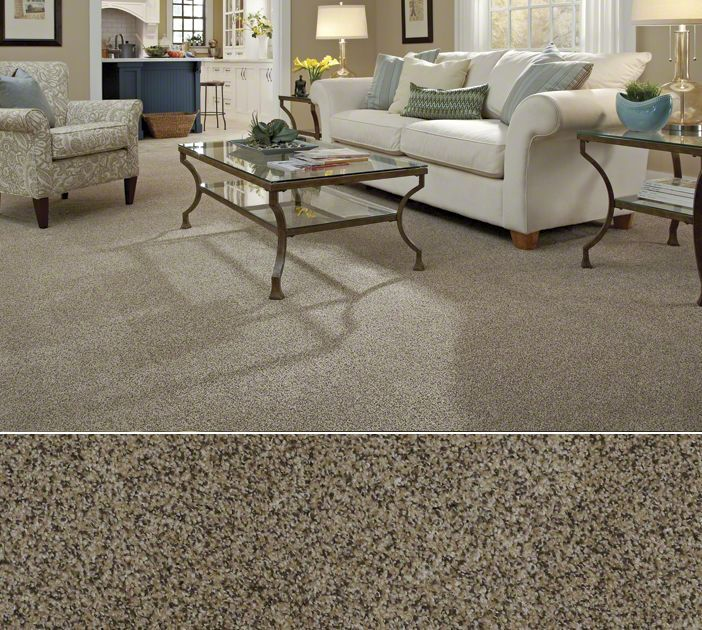Shaw carpeting in stainmaster nylon textured construction for Shaw flooring