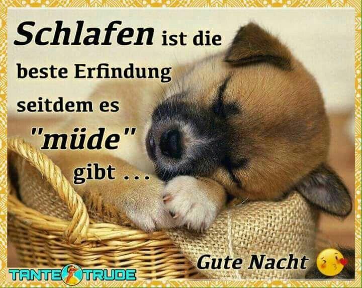2528 best Schönen Abend images on Pinterest | Funny pics ...