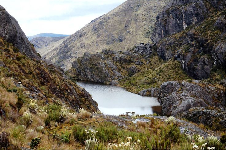 Colombia - Laguna La Barrosa, Paramo de Santurban, Santander.