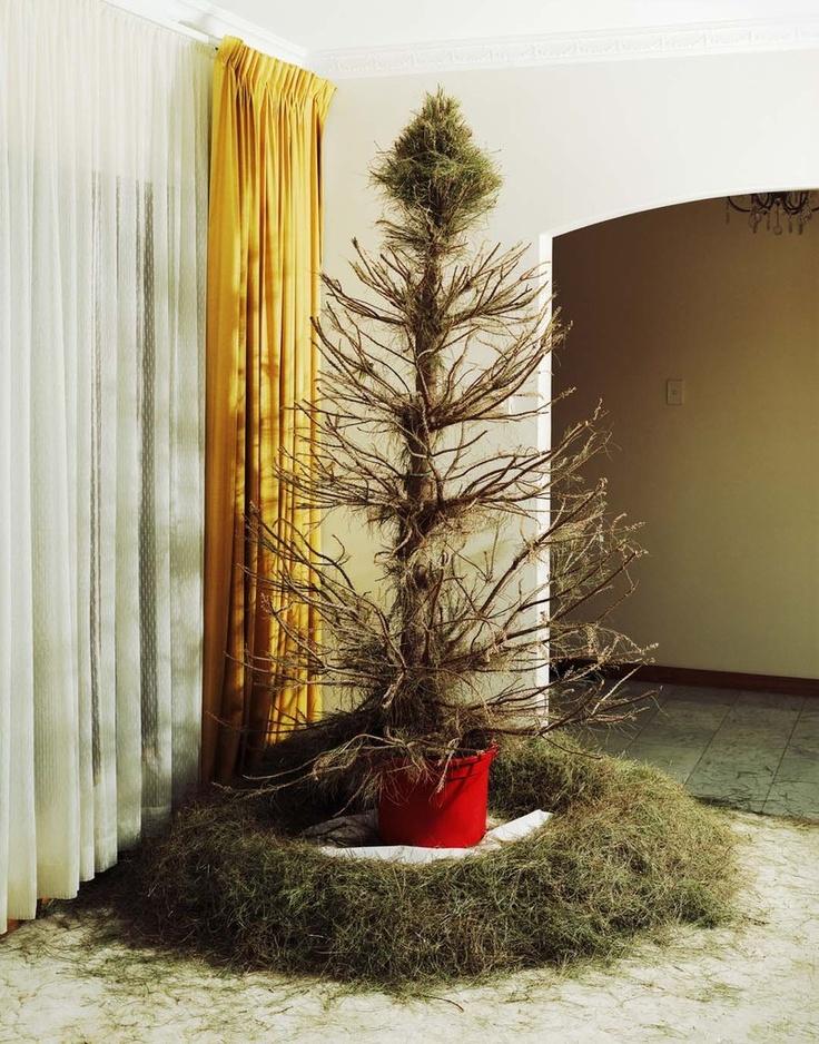 ChristmasTree 2008 © Trent Parke/Magnum Photos
