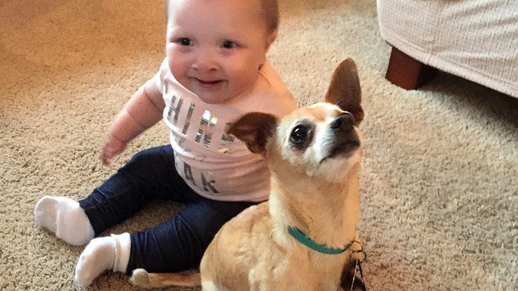 Baby and her new dog have something in common (besides adorableness)