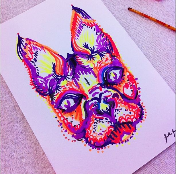 French Bulldog painting by Bronte Goodieson #frenchbulldog #puppy #brontegoodieson #cute #gouache #paint #acrylic #ears #furry #dogportrait