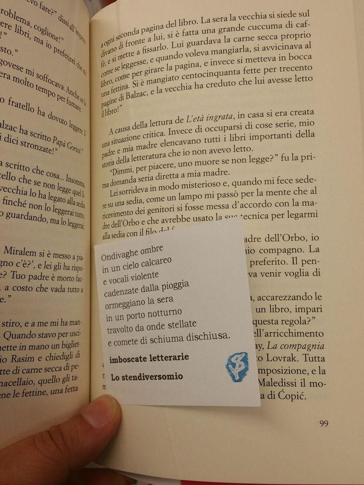 Altra imboscata letteraria milanese immortalata tra le pagine di ''Lungo la via lattea'' di Emir Kusturica.  Ma Rea