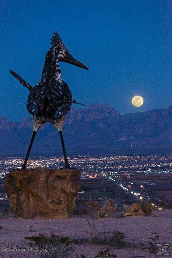 Moon view. Photo taken by Mike Groves. Las Cruces, New Mexico. The large metallic roadrunner wad constructed from recycled materials