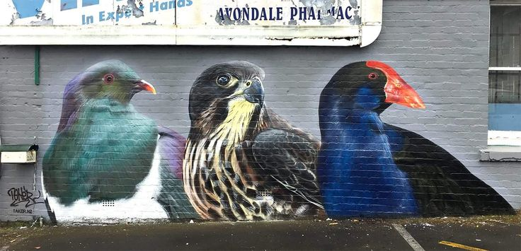 TakerOne photo realistic graffiti. Avondale, Auckland. New Zealand native birds, from left to right: Kereru (New Zealand Pigeon), Karearea (New Zealand Falcon) and Pukeko (Purple Swamphen) https://facebook.com/takeronegraffiti/