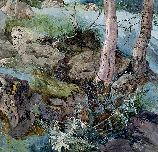 *4 John Ruskin: Artist and Observer