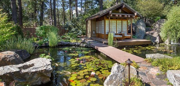 Outdoor Living Spaces: Patio, Forest, Asian, Japanese, Pond, Water Lilies, Stones, Zen Garden, Path, Deck, Chaise Lounges, Patio Furniture
