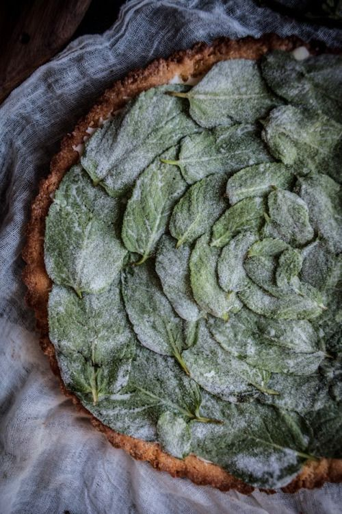 "wistfullycountry: "" Peppermint White Chocolate Tart w/a Hazelnut Crust & Candied Mint Leaves 
