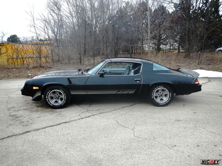 375 best camaro images on pinterest chevrolet camaro chevy camaro 1981 camaro z28 1981 chevrolet camaro z28 black silver loaded original and unrestored publicscrutiny Image collections