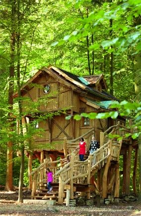 tree houses for adults | Tree house at Tripsdrill Amusement Park, Germany
