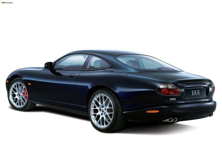 11 best Jaguar XK 2000 images on Pinterest  Jaguar cars Car and