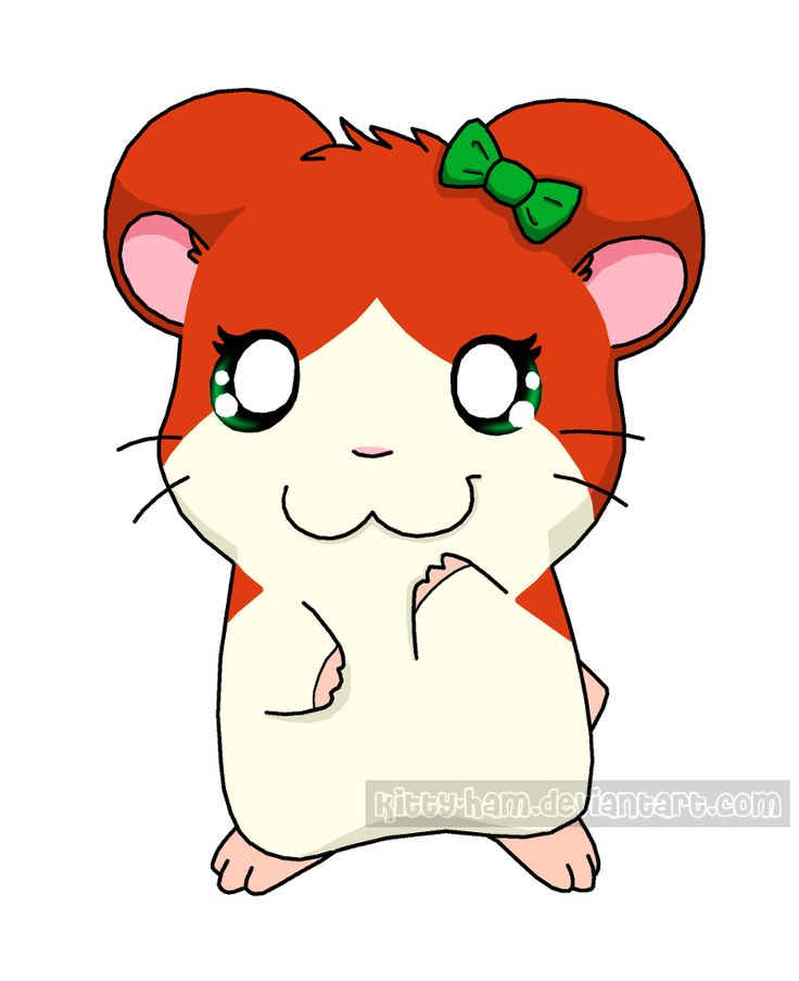 17 Best images about Hamtaro on Pinterest | Hamsters, Sean ...