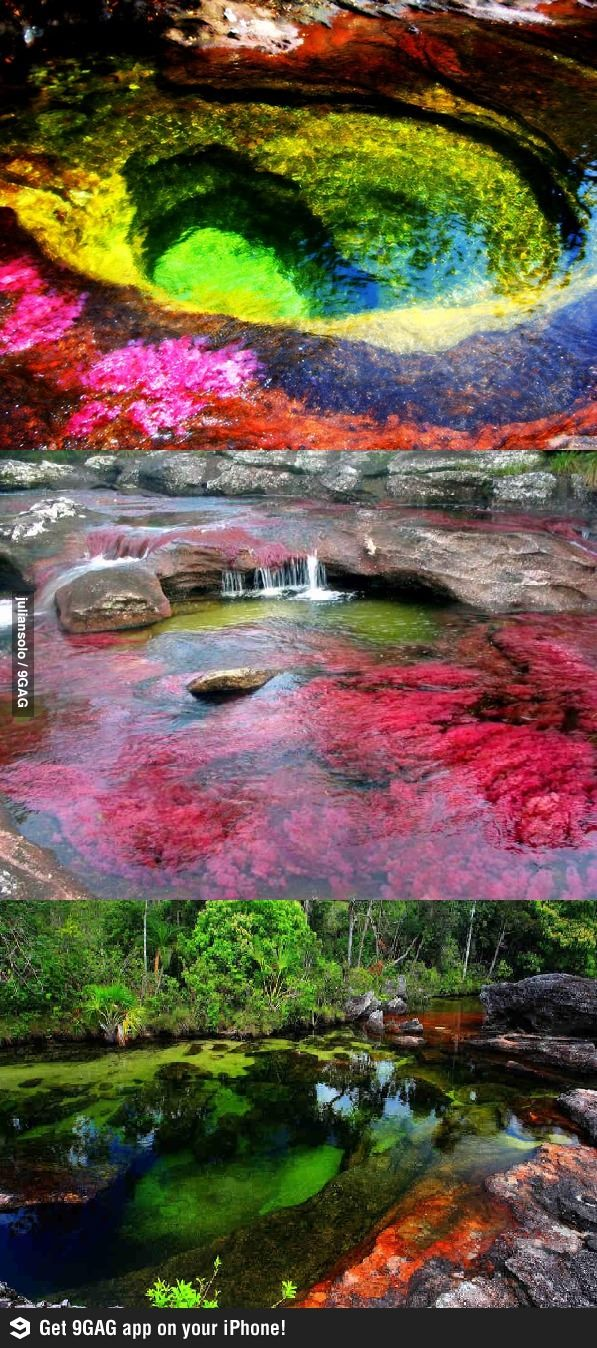 Cano Cristales in Colombia- reminds me of that rainbow cave from dragon tales..lol...or rain bow rocks from emily windsnap:)