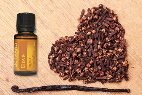 A natural stimulant, Clove essential oil contains powerful antioxidant properties and supports cardiovascular health when taken internally. Many have found it useful in helping clean teeth and gums when added to toothpaste. A little drop goes a long way!  Check out my Facebook Shop for some great deals on doTERRA Essential Oils: https://www.facebook.com/pg/ShelbysEssentials/shop/?rid=709050545811405&rt=6