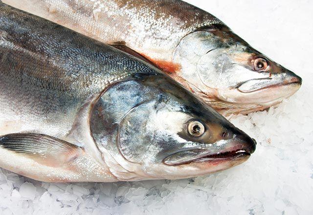 Balığın tazeliği nasıl anlaşılır?