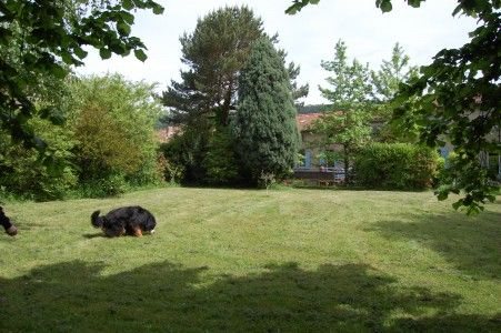 French property, houses and homes for sale in ST AMANS SOULT, Tarn, Midi_Pyrenees