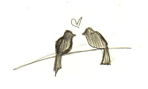 Image result for two birds on a wire