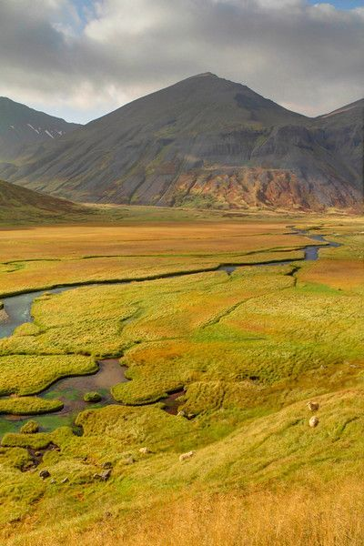 The Trollaskagi peninsula is a lesser known gem of Iceland. The coastal and inland scenery are simply stunning.