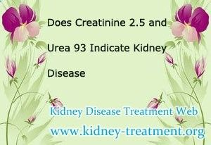 Does creatinine 2.5 nd urea 93 indicate kidney disease? In fact, both of creatinine and urea level are the indicators of kidney disease, especially the creatinine level. In clinic, exclude the non-pathology factors, creatinine 2.4 means the disease now is in stage 3 and the kidney function is lower than 60%.