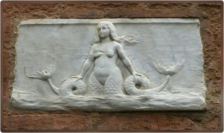 ARTHOTEL!   #sirena bicaudata #arte  #bicaudate mermaid #art