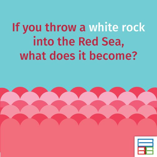 Answer is so simple. The white rock will become wet. #Riddles #Kids #Knowledge #Brain